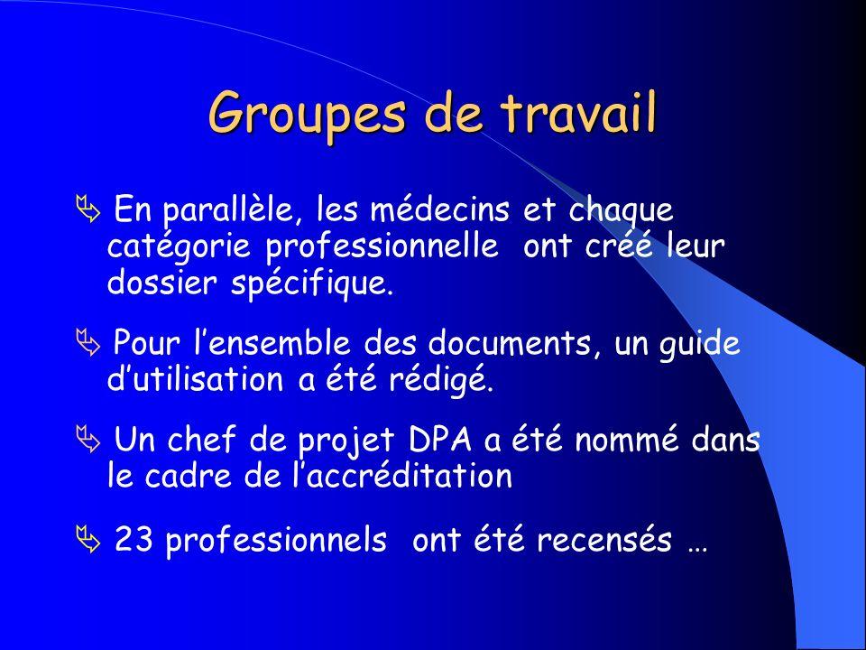 Groupes de travail  En parallèle, les médecins et chaque catégorie professionnelle ont créé leur dossier spécifique.