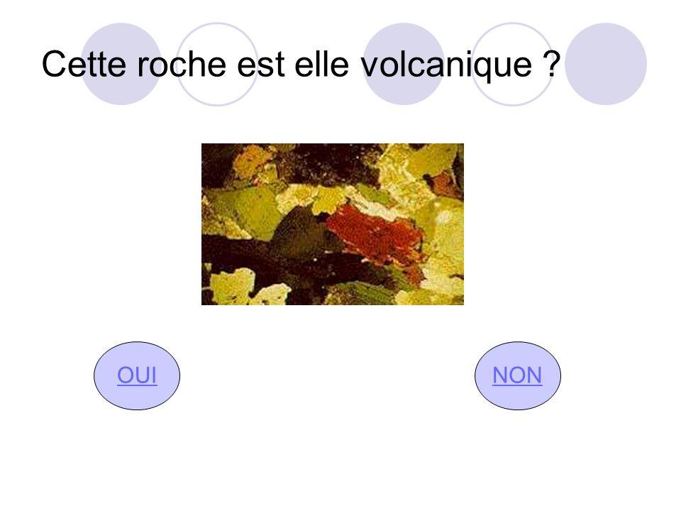 Cette roche est elle volcanique