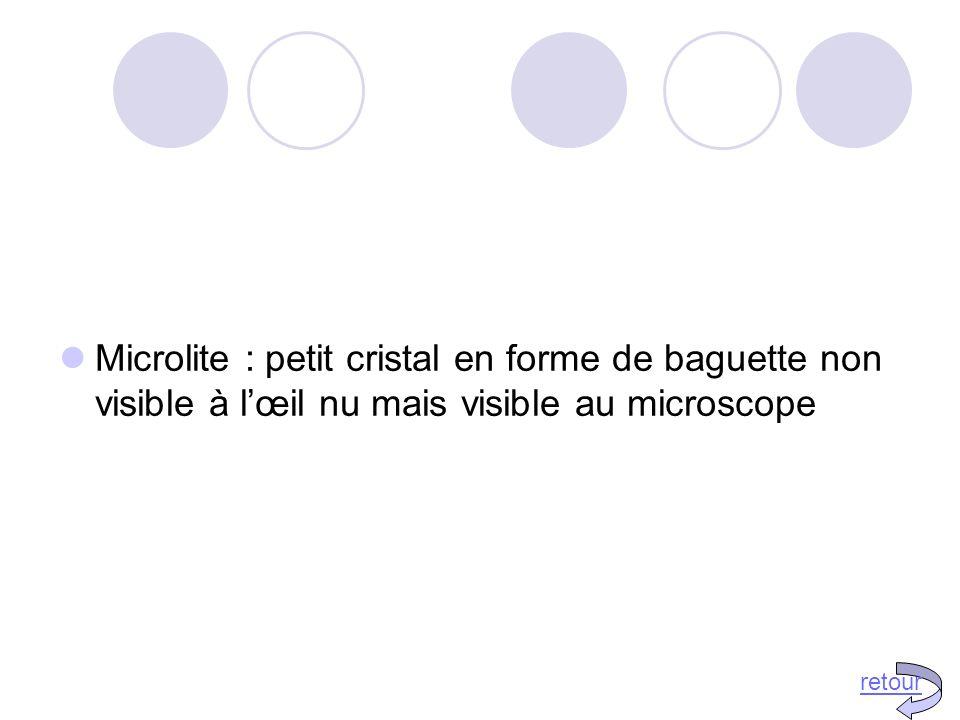 Microlite : petit cristal en forme de baguette non visible à l'œil nu mais visible au microscope