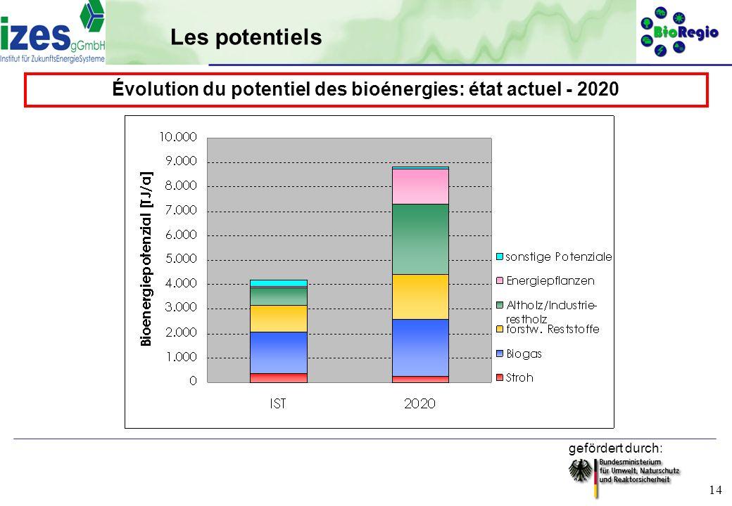 Évolution du potentiel des bioénergies: état actuel - 2020
