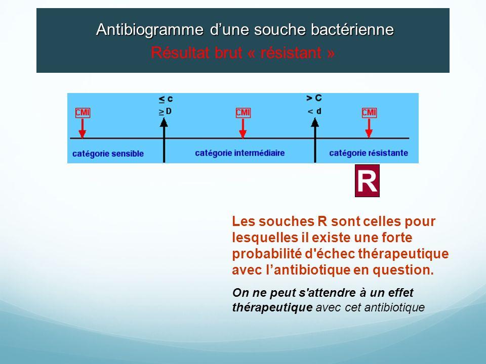R Résultat brut « résistant » Antibiogramme d'une souche bactérienne