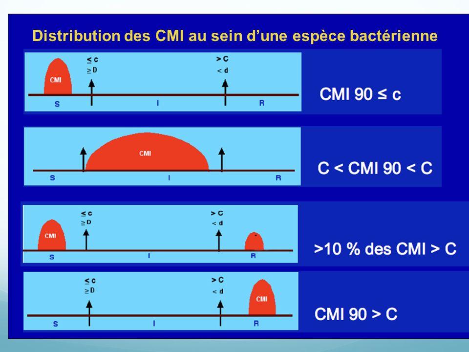 Distribution des CMI au sein d'une espèce bactérienne