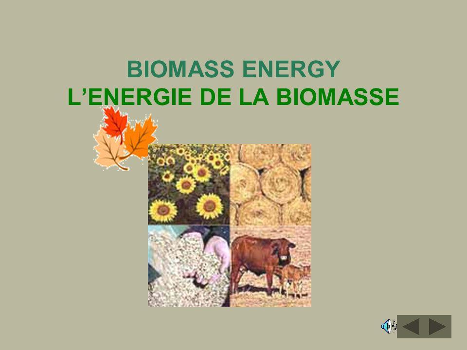 BIOMASS ENERGY L'ENERGIE DE LA BIOMASSE