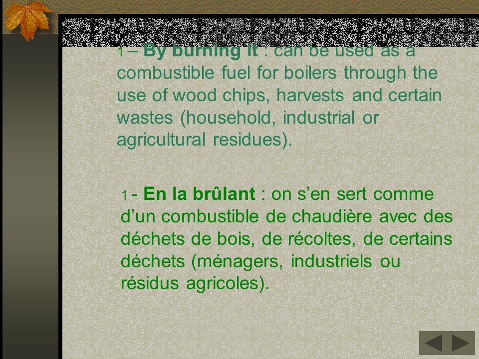 1 – By burning it : can be used as a combustible fuel for boilers through the use of wood chips, harvests and certain wastes (household, industrial or agricultural residues).