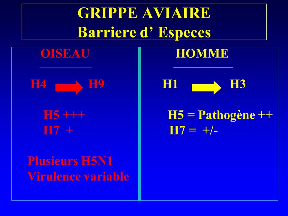 GRIPPE AVIAIRE Barriere d' Especes
