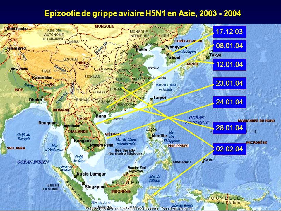 Epizootie de grippe aviaire H5N1 en Asie, 2003 - 2004