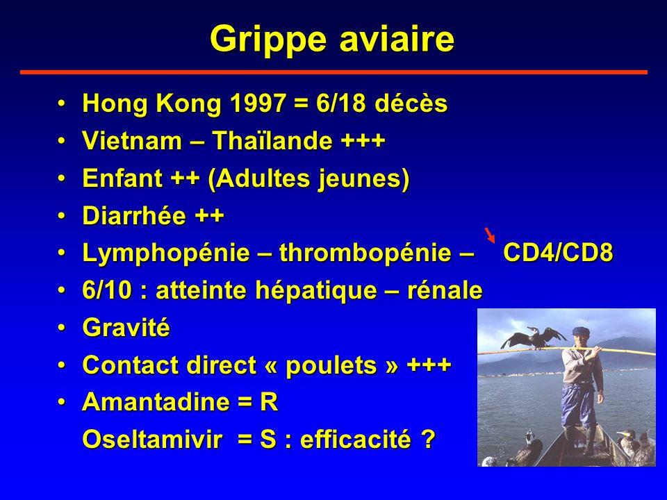 Grippe aviaire Hong Kong 1997 = 6/18 décès Vietnam – Thaïlande +++