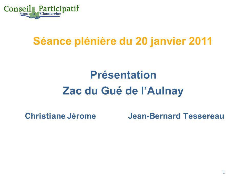 Séance plénière du 20 janvier 2011