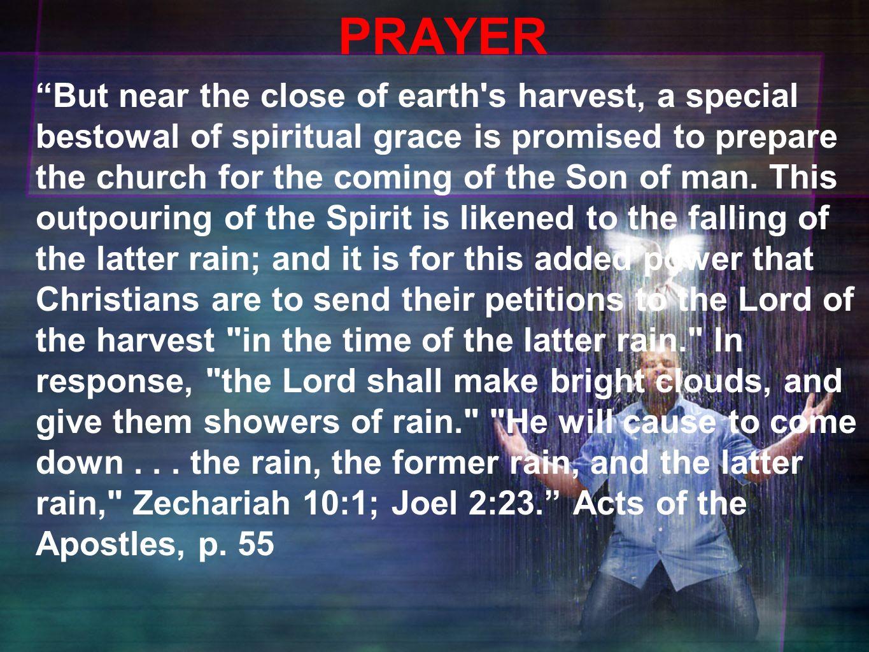 spirit fallen rain