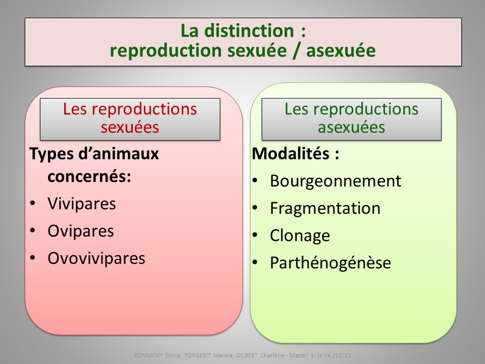 fragmentation-reproduction