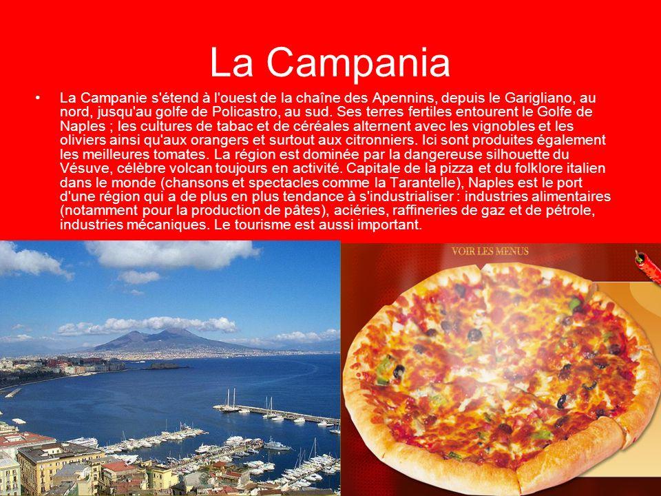 La Campanie s étend à l ouest de la chaîne des Apennins, depuis le Garigliano, au nord, jusqu au golfe de Policastro, au sud. Ses terres fertiles entourent le Golfe de Naples ; les cultures de tabac et de céréales alternent avec les vignobles et les oliviers ainsi qu aux orangers et surtout aux citronniers. Ici sont produites également les meilleures tomates. La région est dominée par la dangereuse silhouette du Vésuve, célèbre volcan toujours en activité. Capitale de la pizza et du folklore italien dans le monde (chansons et spectacles comme la Tarantelle), Naples est le port d une région qui a de plus en plus tendance à s industrialiser : industries alimentaires (notamment pour la production de pâtes), aciéries, raffineries de gaz et de pétrole, industries mécaniques. Le tourisme est aussi important.