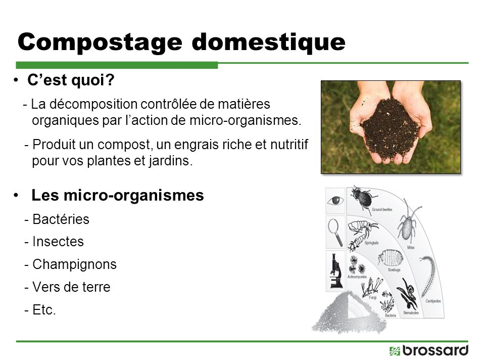 formation sur le compostage domestique ppt video online t l charger. Black Bedroom Furniture Sets. Home Design Ideas