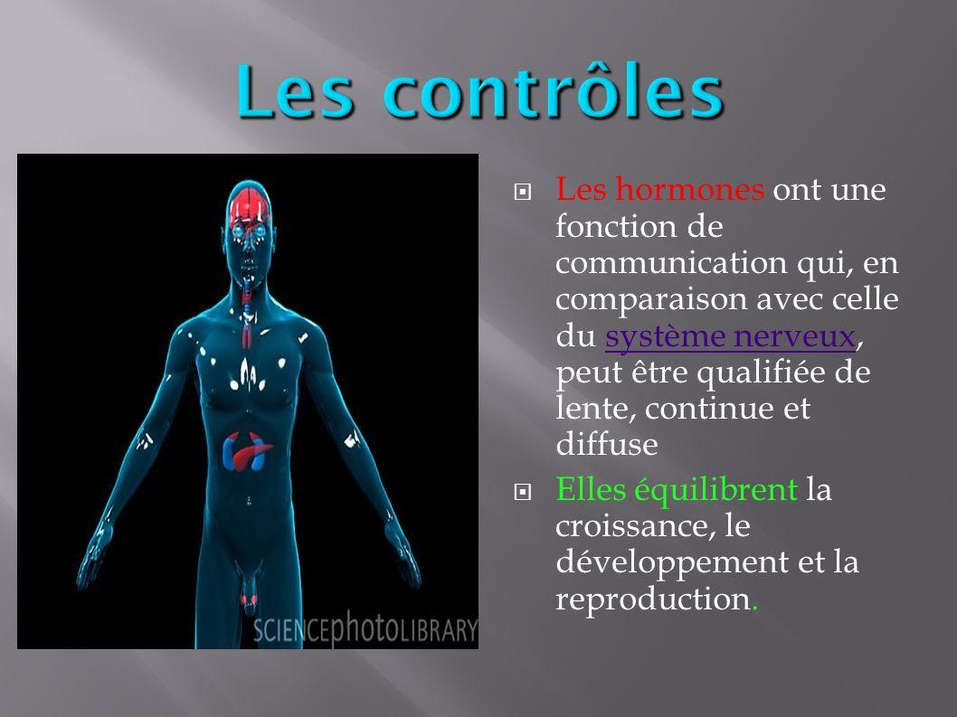 Les hormones Français BI ppt video online télécharger