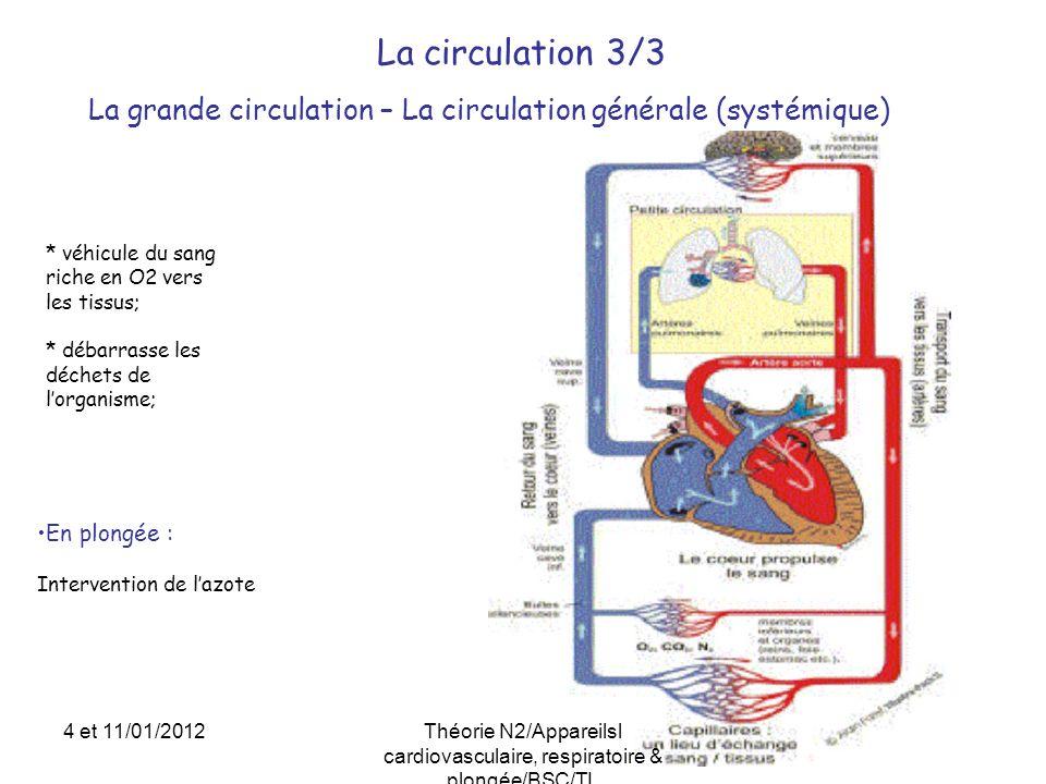 La circulation 3/3 La grande circulation – La circulation générale (systémique) * véhicule du sang riche en O2 vers les tissus;
