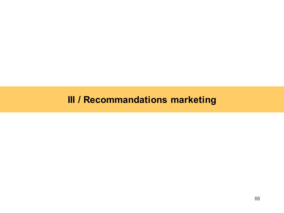 III / Recommandations marketing