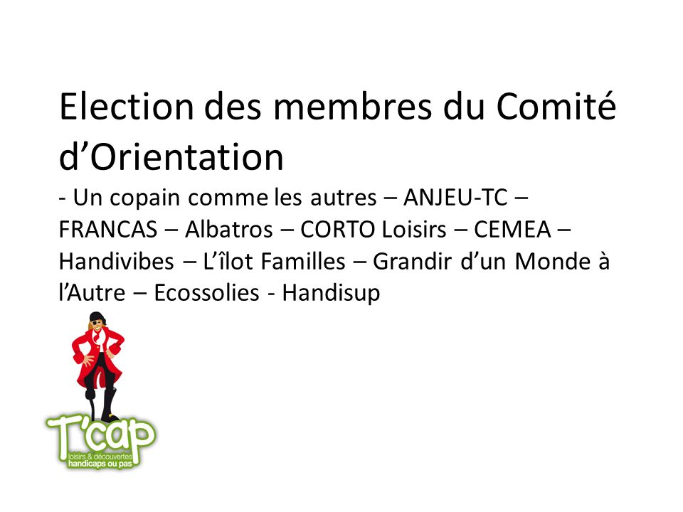 Election des membres du Comité d'Orientation - Un copain comme les autres – ANJEU-TC – FRANCAS – Albatros – CORTO Loisirs – CEMEA – Handivibes – L'îlot Familles – Grandir d'un Monde à l'Autre – Ecossolies - Handisup