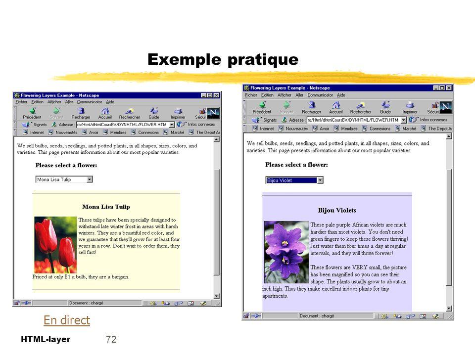 Exemple pratique En direct 72 HTML-layer