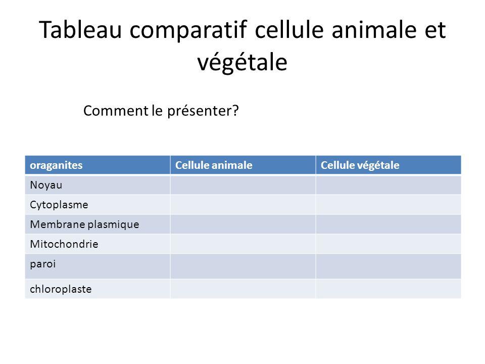 Tableau comparatif cellule animale et végétale