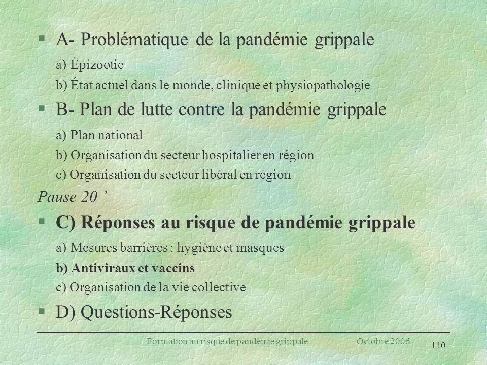 Formation au risque de pandémie grippale Octobre 2006