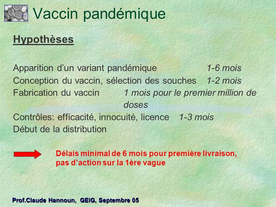 Vaccin pandémique Hypothèses