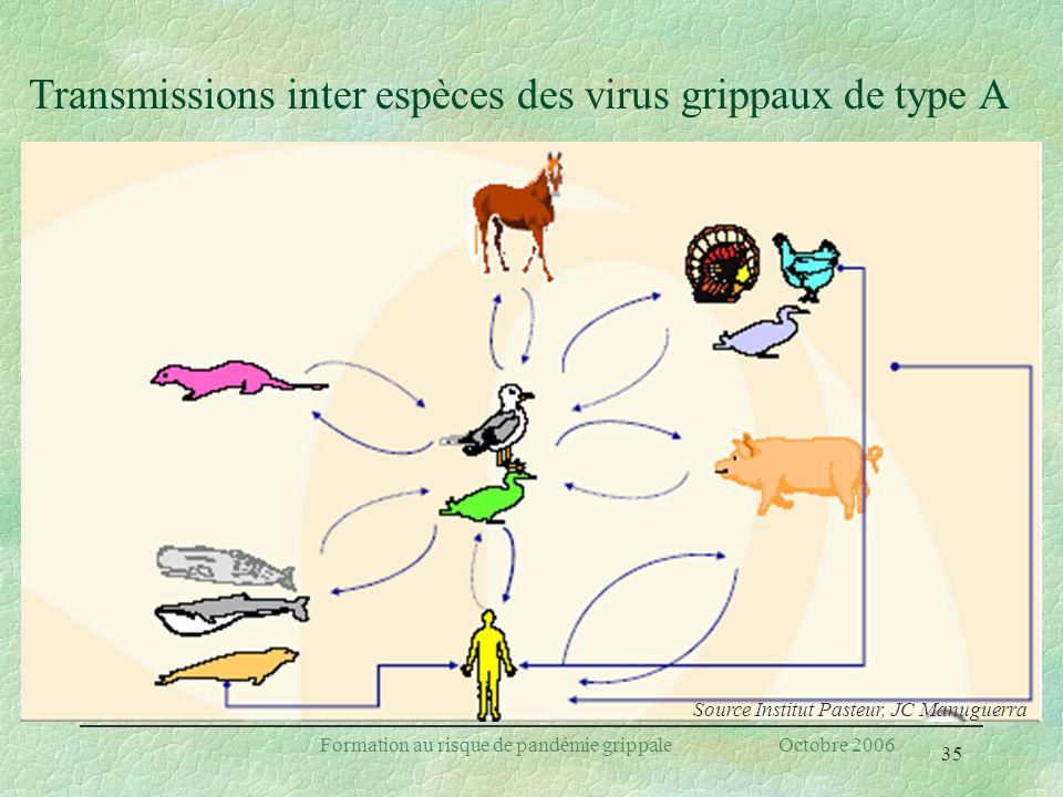 Transmissions inter espèces des virus grippaux de type A