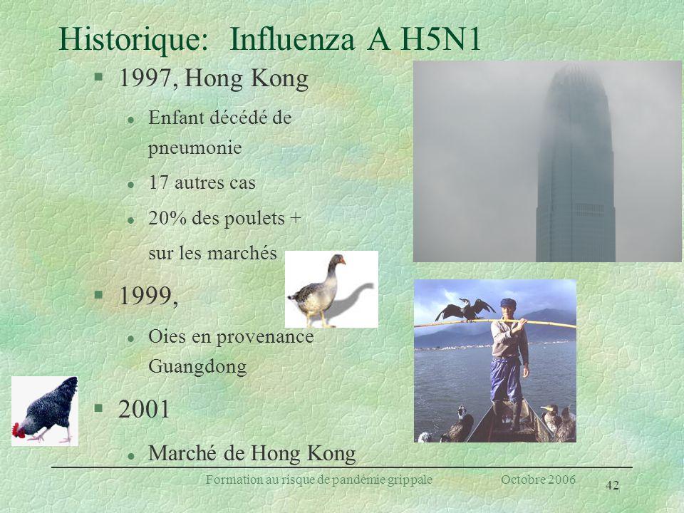 Historique: Influenza A H5N1