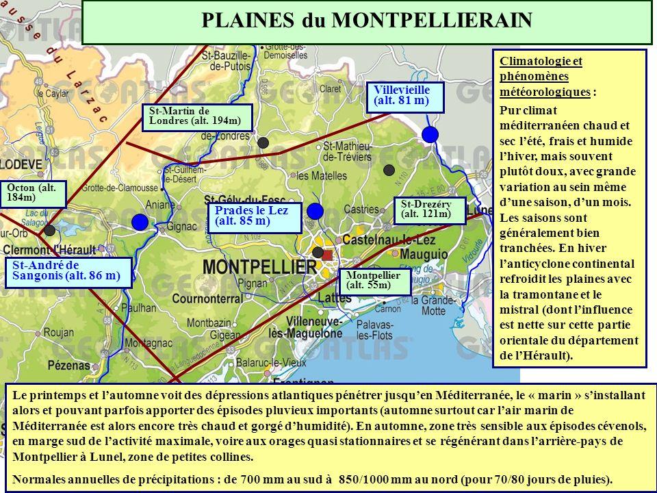 PLAINES du MONTPELLIERAIN