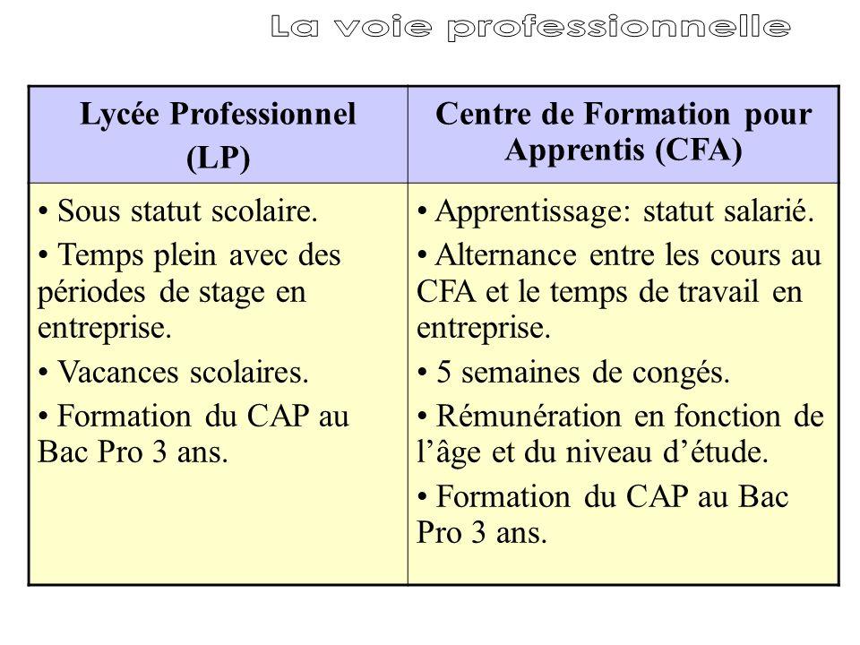 La voie professionnelle Centre de Formation pour Apprentis (CFA)