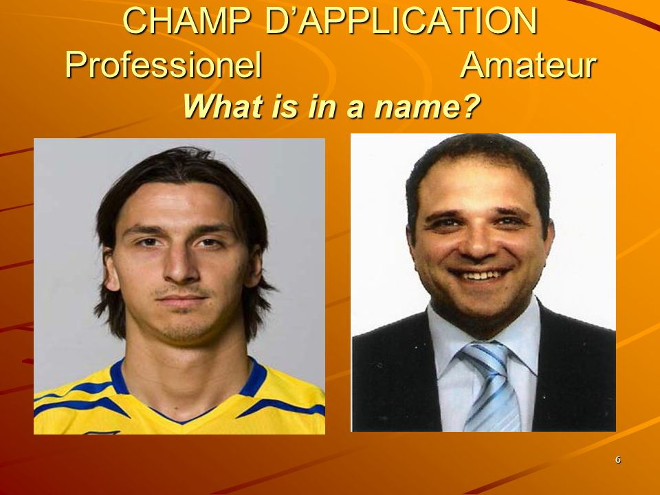 CHAMP D'APPLICATION Professionel Amateur What is in a name