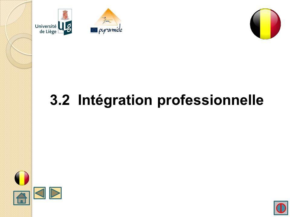 3.2 Intégration professionnelle
