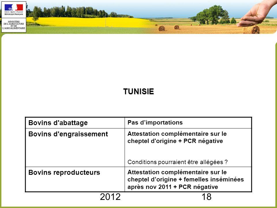 2012 TUNISIE Bovins d abattage Bovins d engraissement