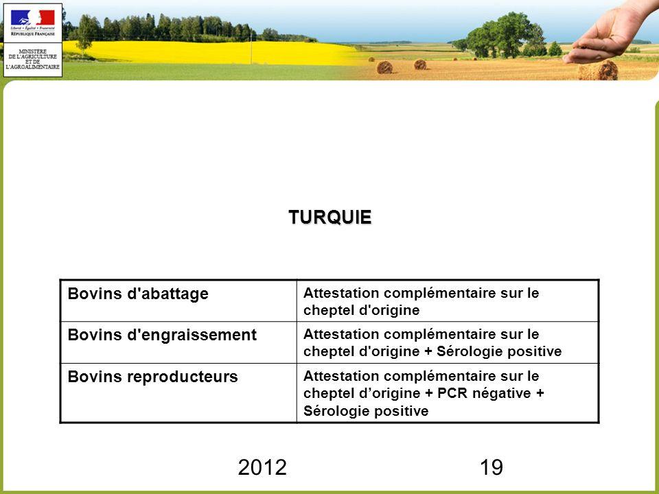 2012 TURQUIE Bovins d abattage Bovins d engraissement