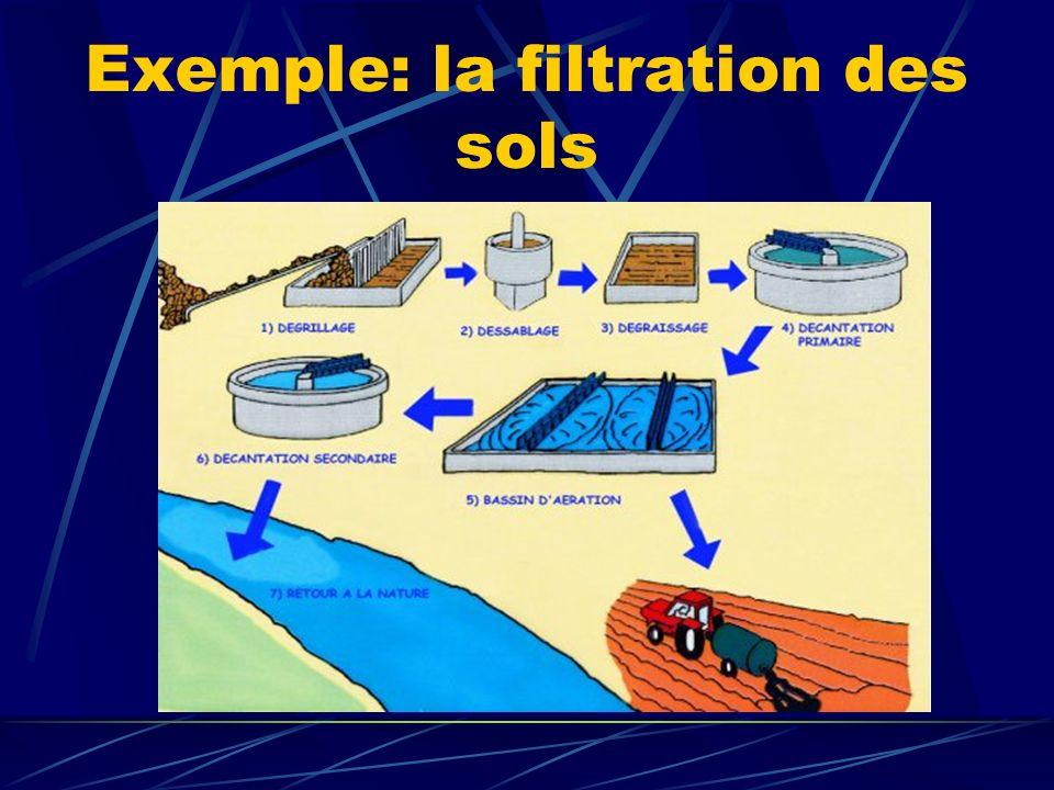 Exemple: la filtration des sols