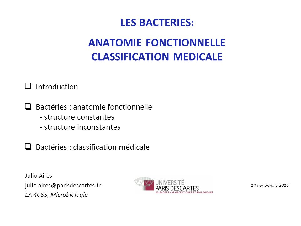 ANATOMIE FONCTIONNELLE CLASSIFICATION MEDICALE