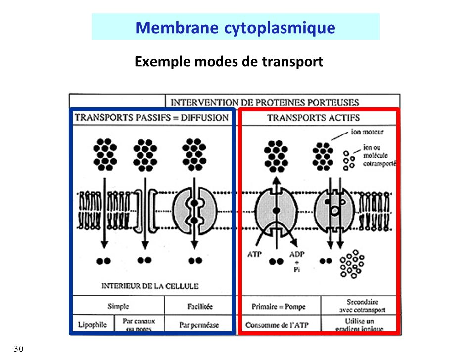 Exemple modes de transport