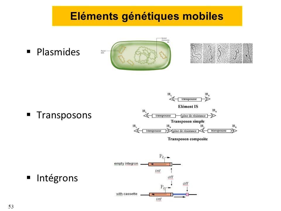 Eléments génétiques mobiles