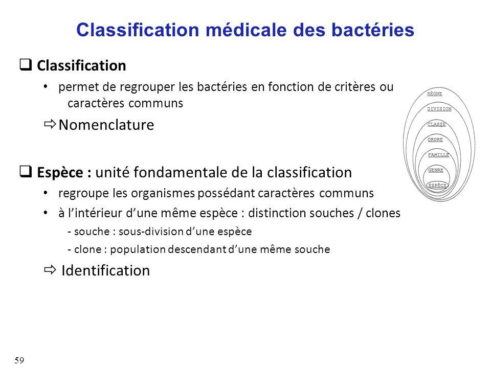 Classification médicale des bactéries