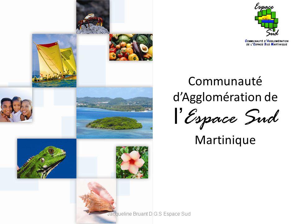 Communauté d'Agglomération de l'Espace Sud Martinique