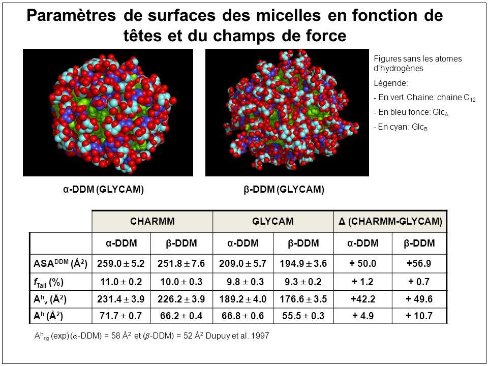 Paramètres de surfaces des micelles en fonction de têtes et du champs de force