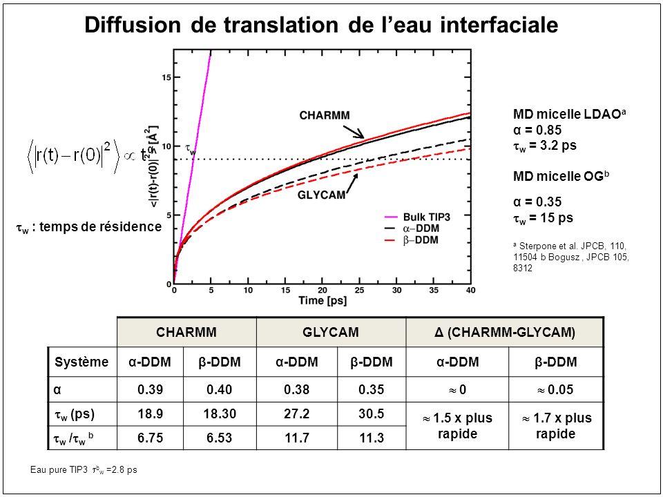Diffusion de translation de l'eau interfaciale