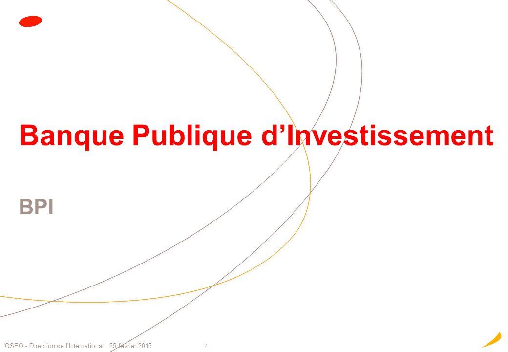 Banque Publique d'Investissement BPI