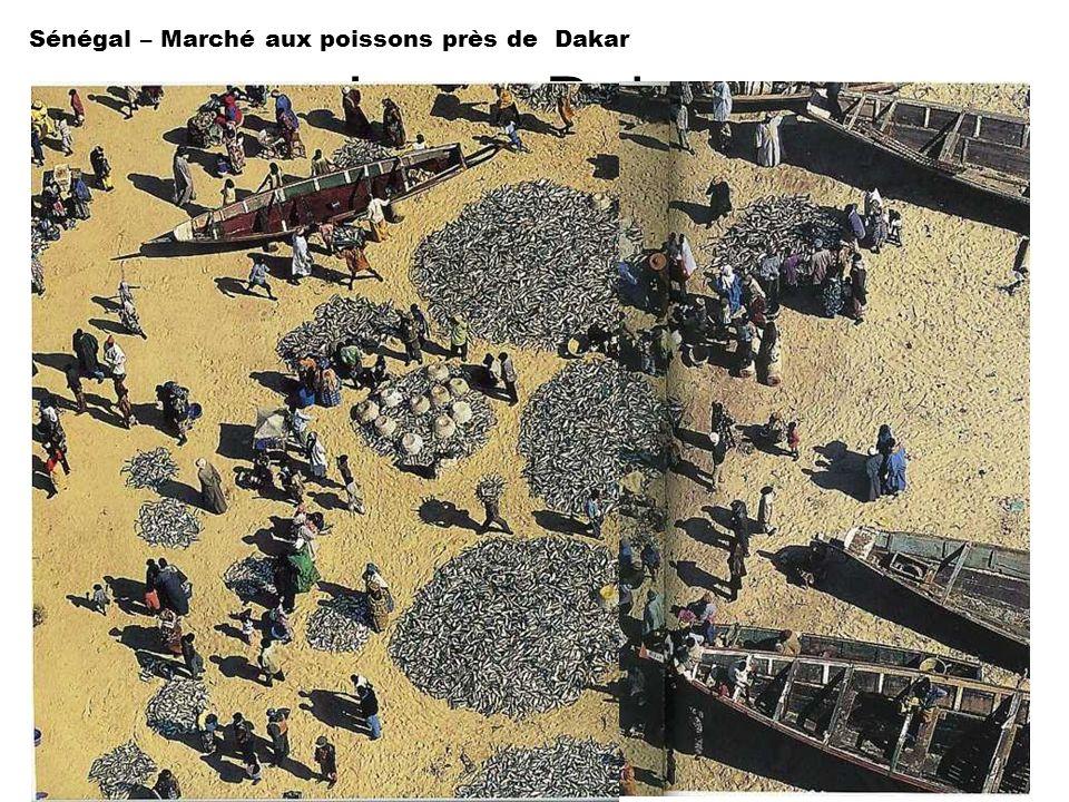Sénégal – Marché aux poissons près de Dakar