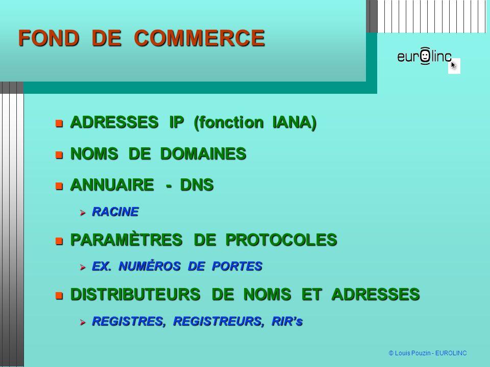 FOND DE COMMERCE ADRESSES IP (fonction IANA) NOMS DE DOMAINES