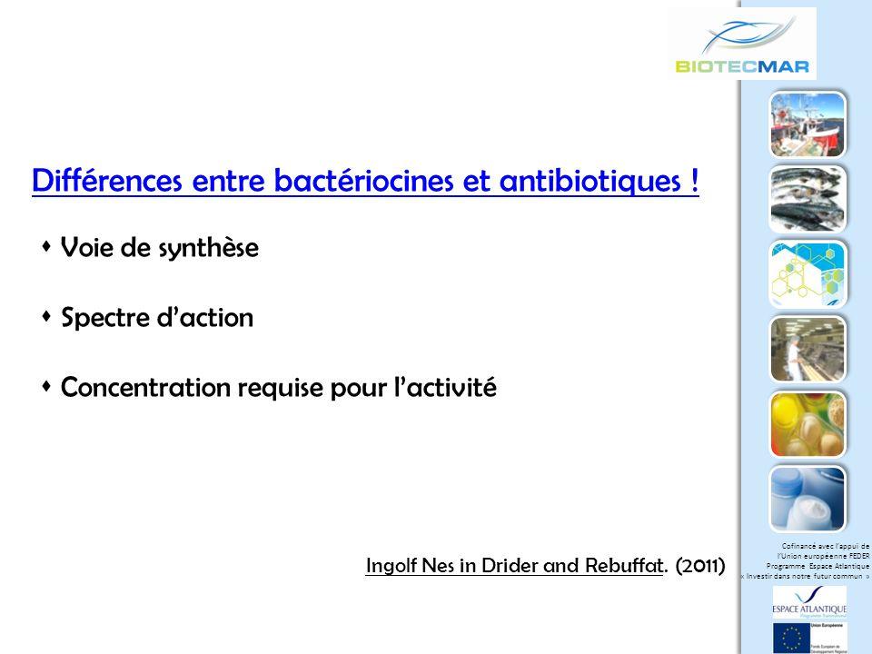 Différences entre bactériocines et antibiotiques !