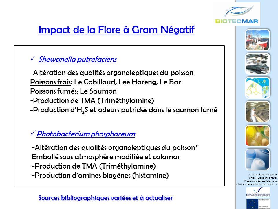 Impact de la Flore à Gram Négatif