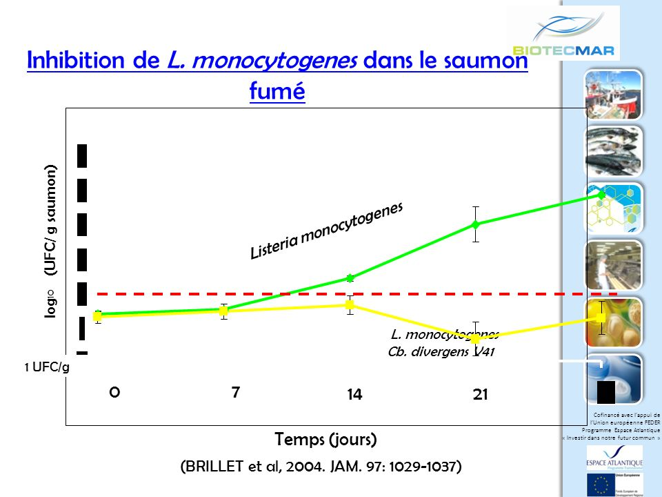 Inhibition de L. monocytogenes dans le saumon fumé