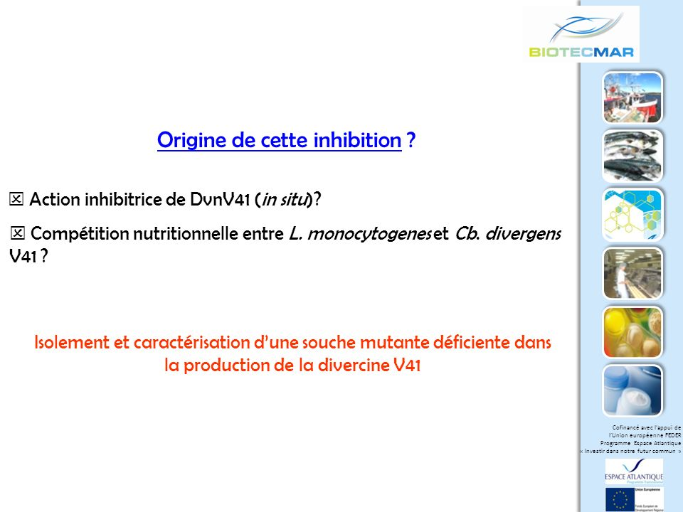 Origine de cette inhibition