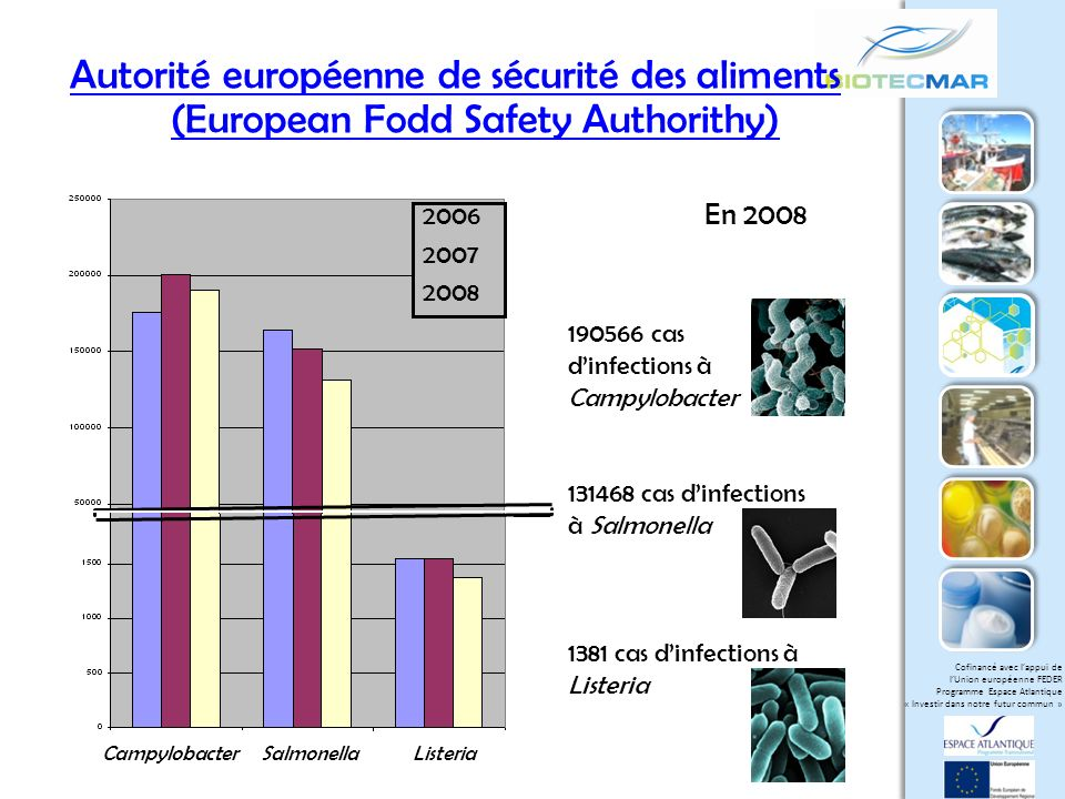 Autorité européenne de sécurité des aliments (European Fodd Safety Authorithy)