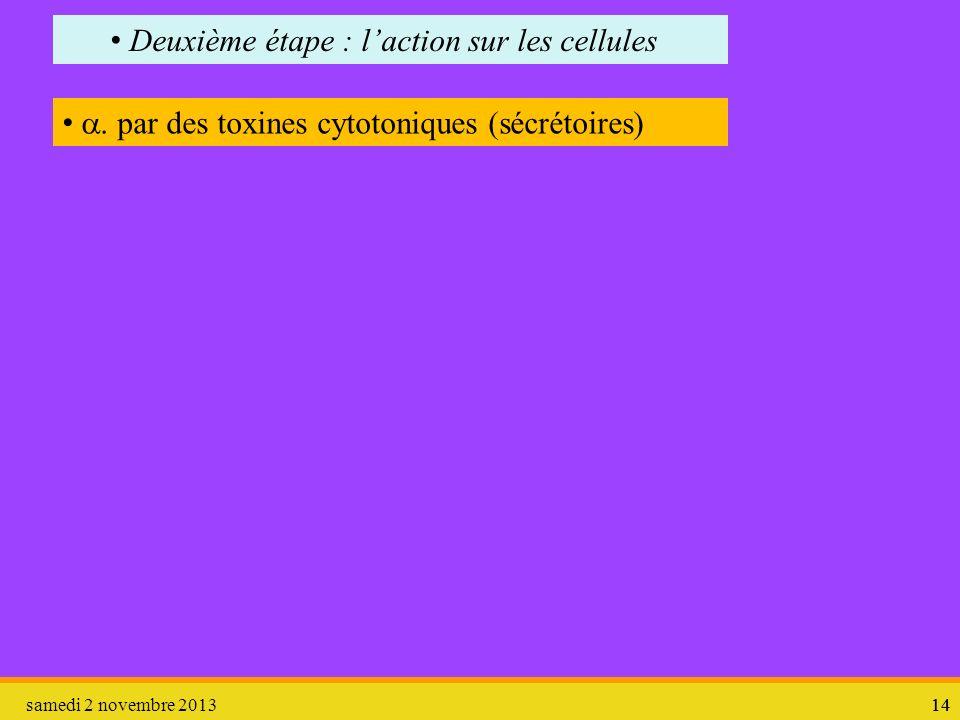 Deuxième étape : l'action sur les cellules