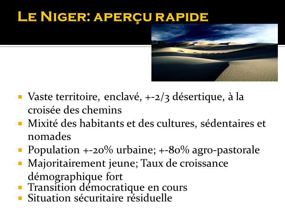 Le Niger: aperçu rapide